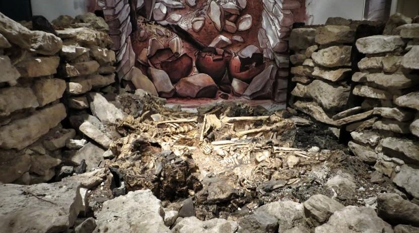 museo musa archeologico università salento puglia musei
