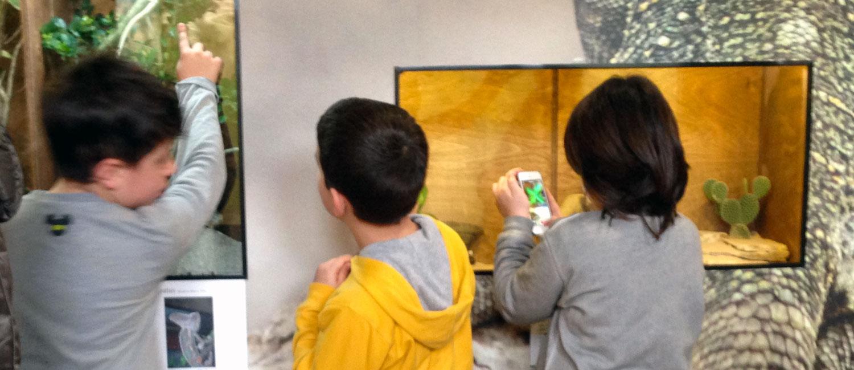 Bambini al Museo di storia naturale di Calimera